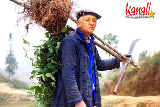 Koyvelis_the_farmer