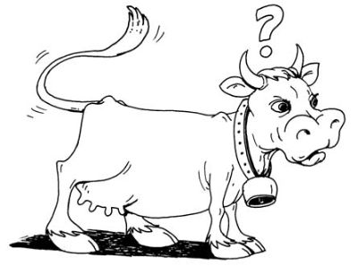 cow_-_cartoon_3
